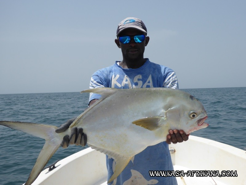 Photos Bijagos Island, Guinea Bissau : Fishes in the archipelago -