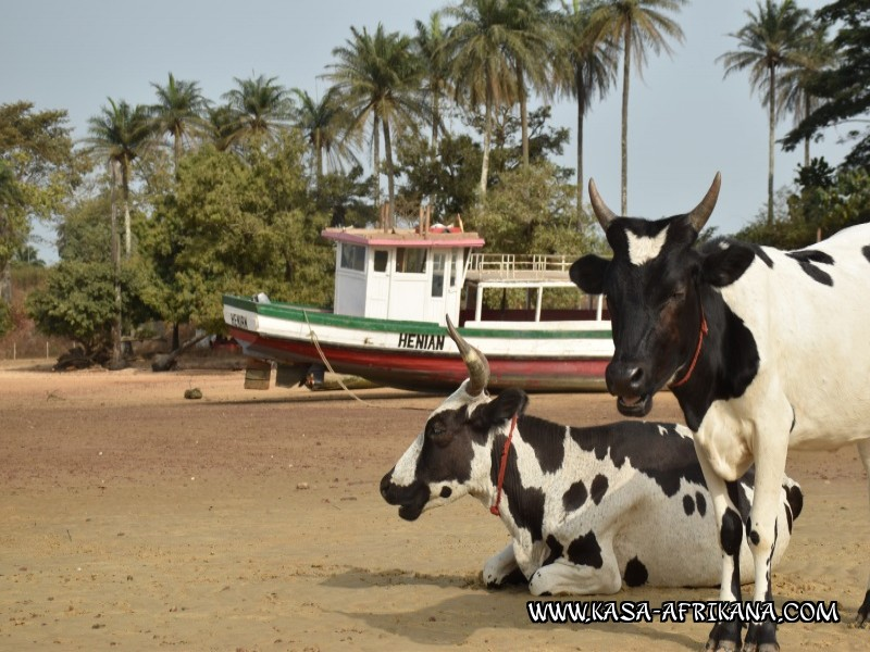 Photos Bijagos Island, Guinea Bissau : Picturesque -