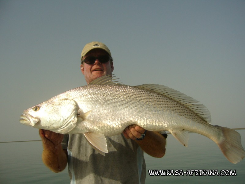 Photos Bijagos Island, Guinea Bissau : Our best catches - Umbrine